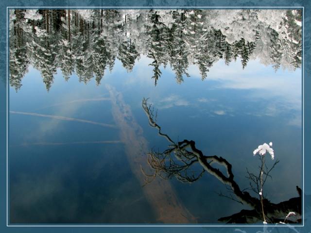 Žiemos veidrodžiai